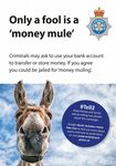 NYP19-0042 - Poster: Tell 2 Fraud Money mule